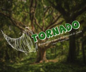 TORNADO – 2 pubblicazione